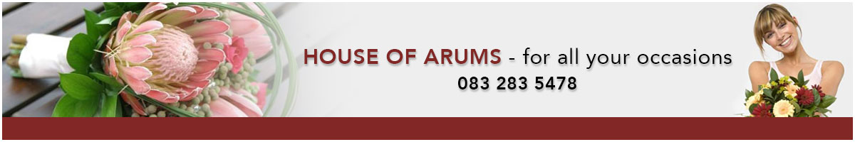 House of Arums Front Page Ad