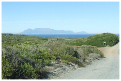 koeberg-private-nature-reserve